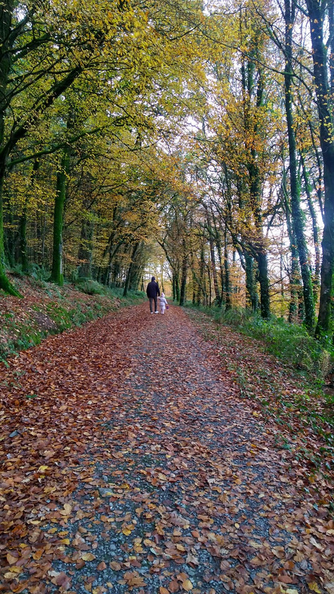 IMG-20181107-WA0006 