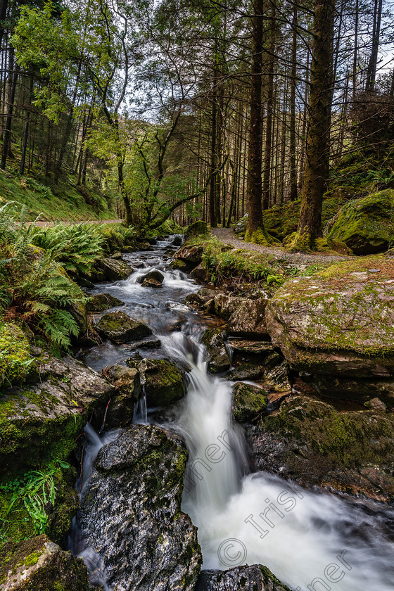LetItFlow 