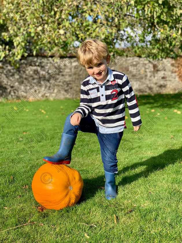 IMG-20181017-WA0003 