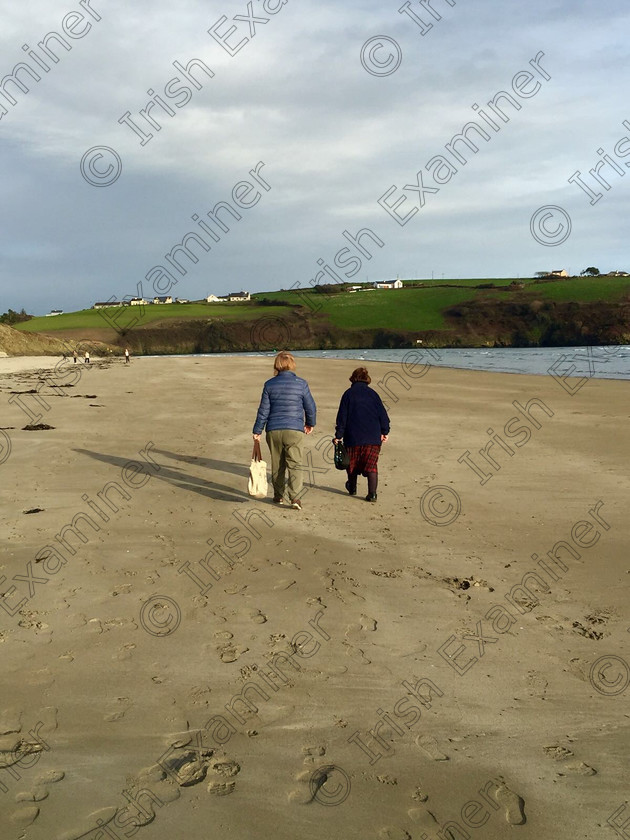 IMG 3701 