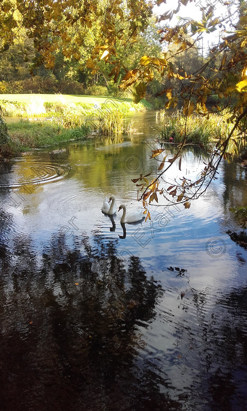 20161023 160632 