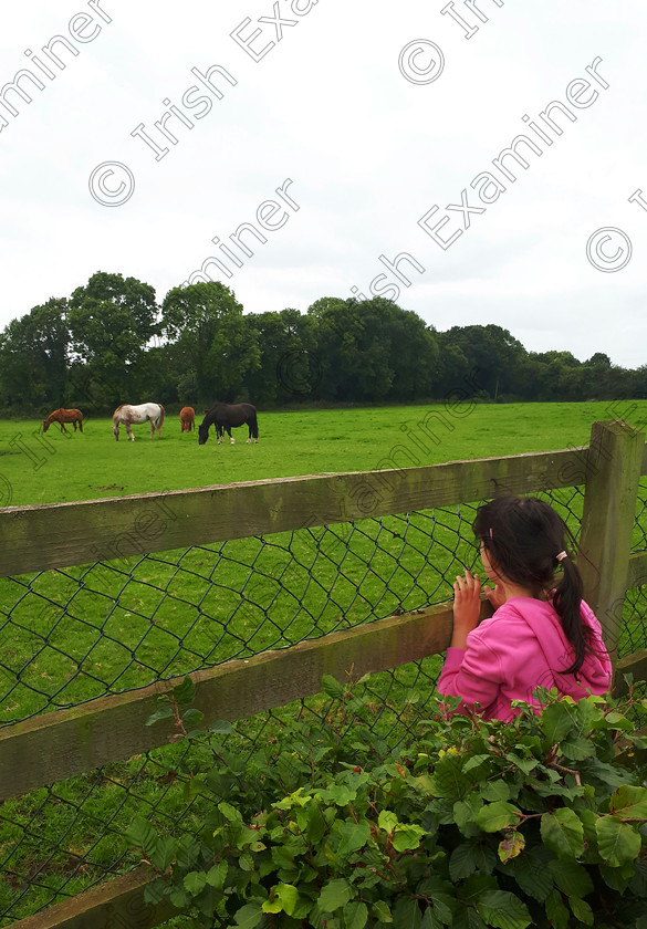 20181026 234032 
