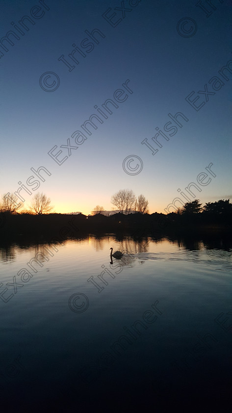 20171107 173501 