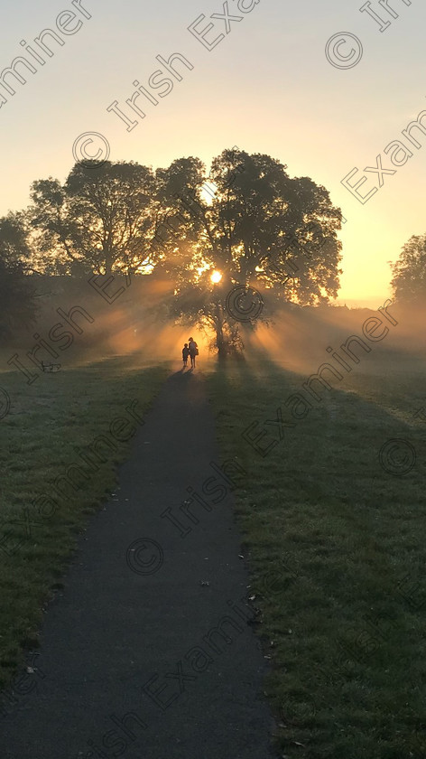 Working Mom A Ahern 